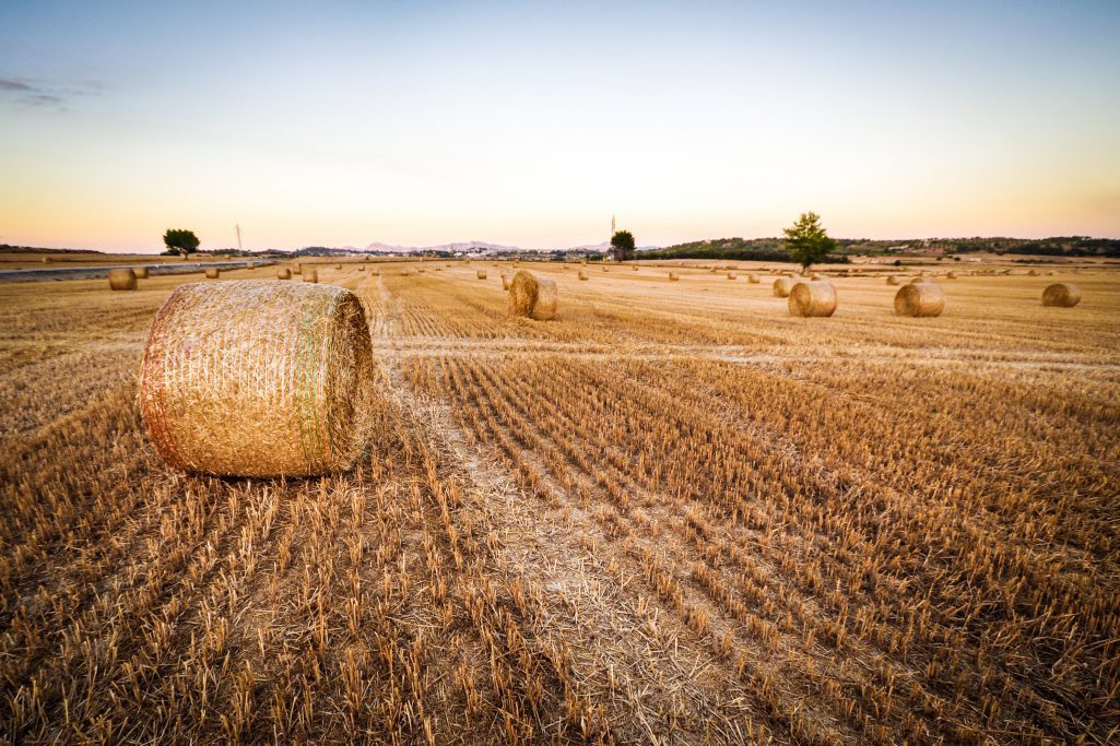 agriculture-lora-thethingsio